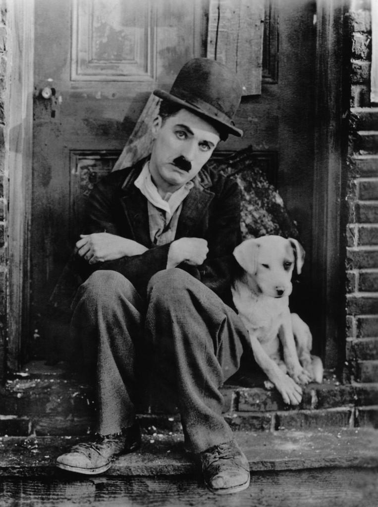 Chaplin: A dog's life