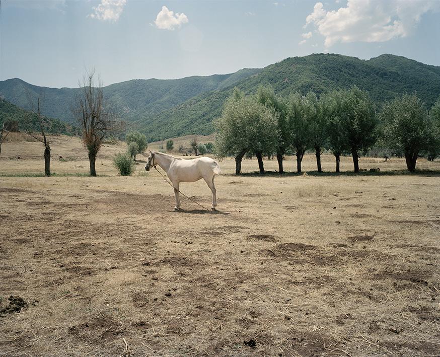 Nomaden geben ihrem Pferd nahe Ovacık eine Pause bei einer Rast auf dem Weg zurück zu ihrem Winterlager.