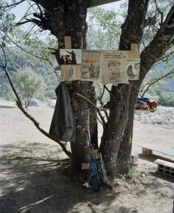 Am Baum einer Guerrilla-Camps in den Bergen Dersims hängen Artikel über die Lage in Kobane, Syrien. Ein Kämpfer hat seine Waffe und seine Jacke abgelegt.