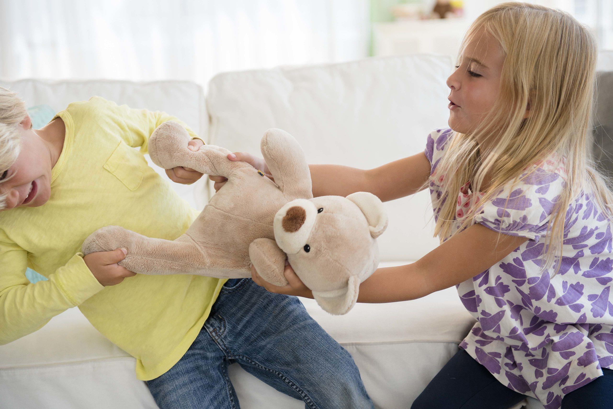 Oft sind es Kleinigkeit, um die sich Geschwister heftig streiten.