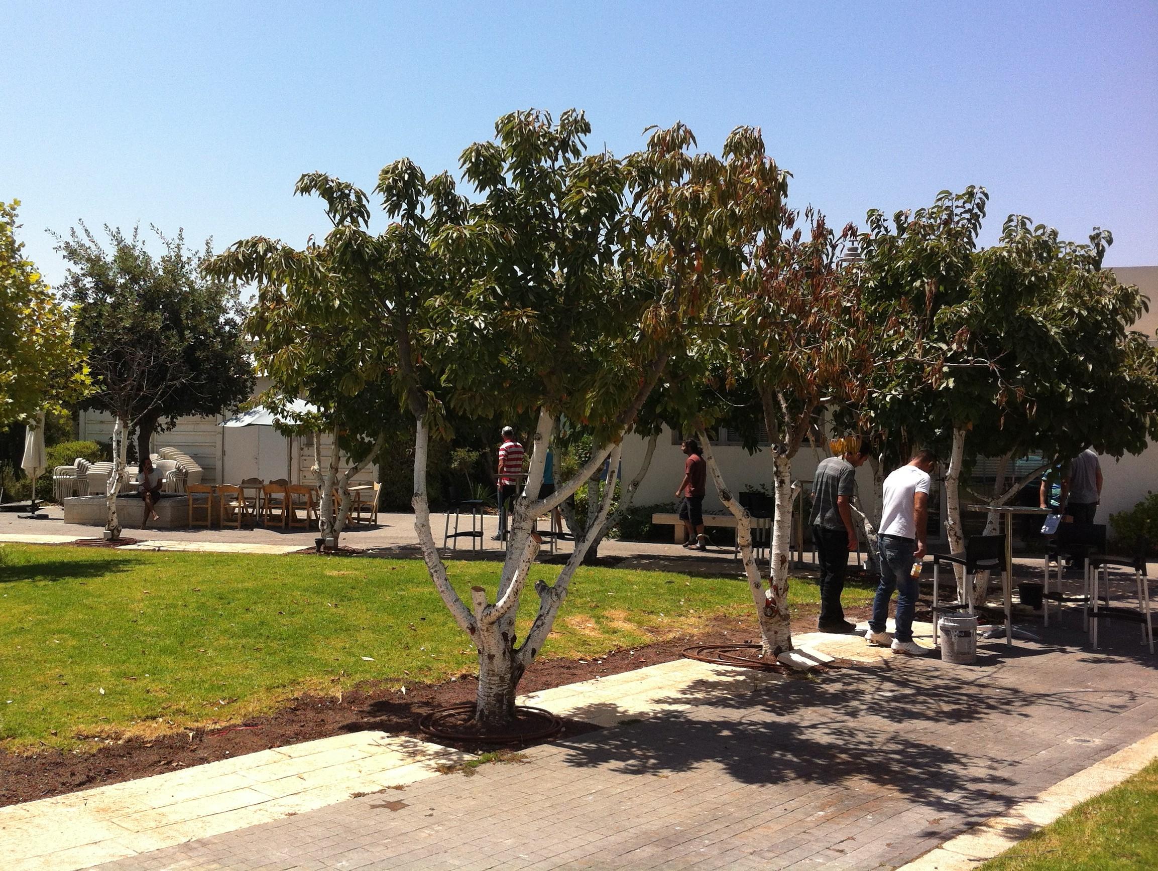 Innenhof in Jerusalem: Kleine Aus- und Sonnenzeit für Gründer