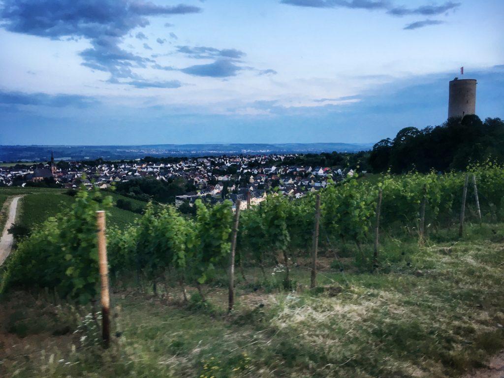 Nachts auf dem Rheinsteig