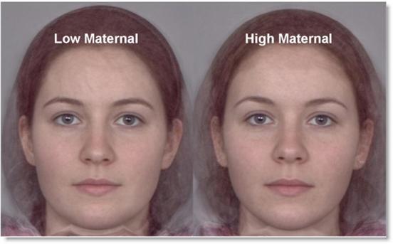 So einfach ist das (1): Gesegnete Weiblichkeit - Planckton
