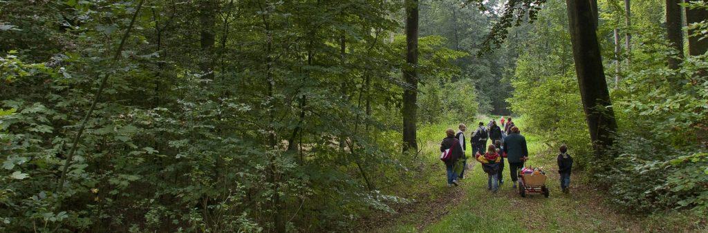 Ohne Begleitung von Eltern undenkbar: Schulklasse auf Waldexkursion