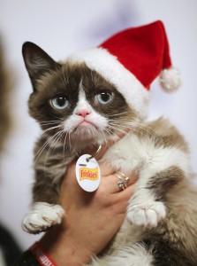 """Beliebtes Haustier, virtuell und in Wirklichkeit: Internetstar """"Grumpy Cat"""" bei der Hollywood Christmas Parade"""