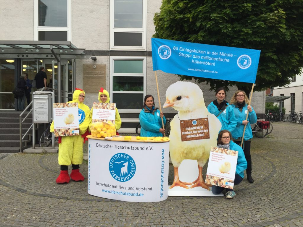 Protest des Tierschutzbundes in Münster vor dem Gerichtsgebäude
